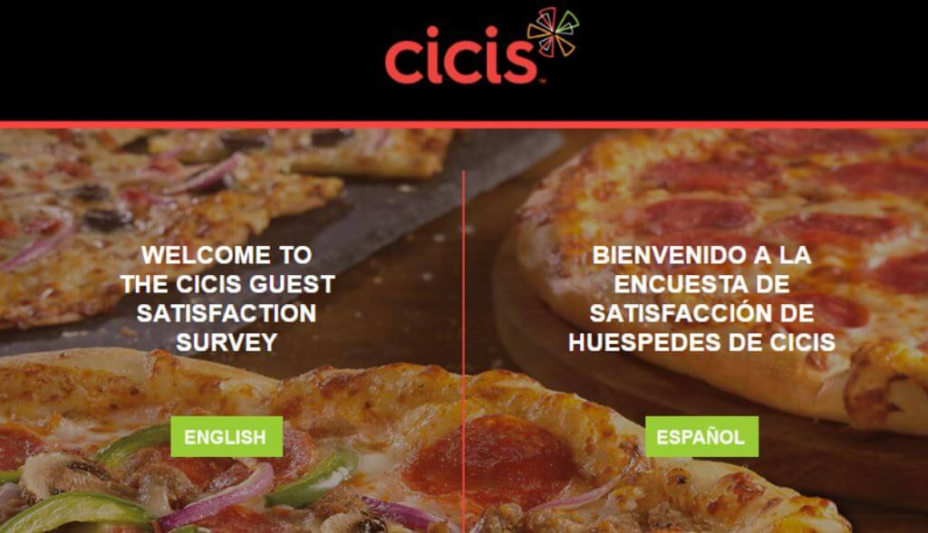 cicis-visit-survey